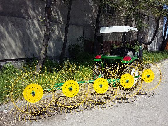 Грабли-ворошилки 5 колесные Польша, фото 2