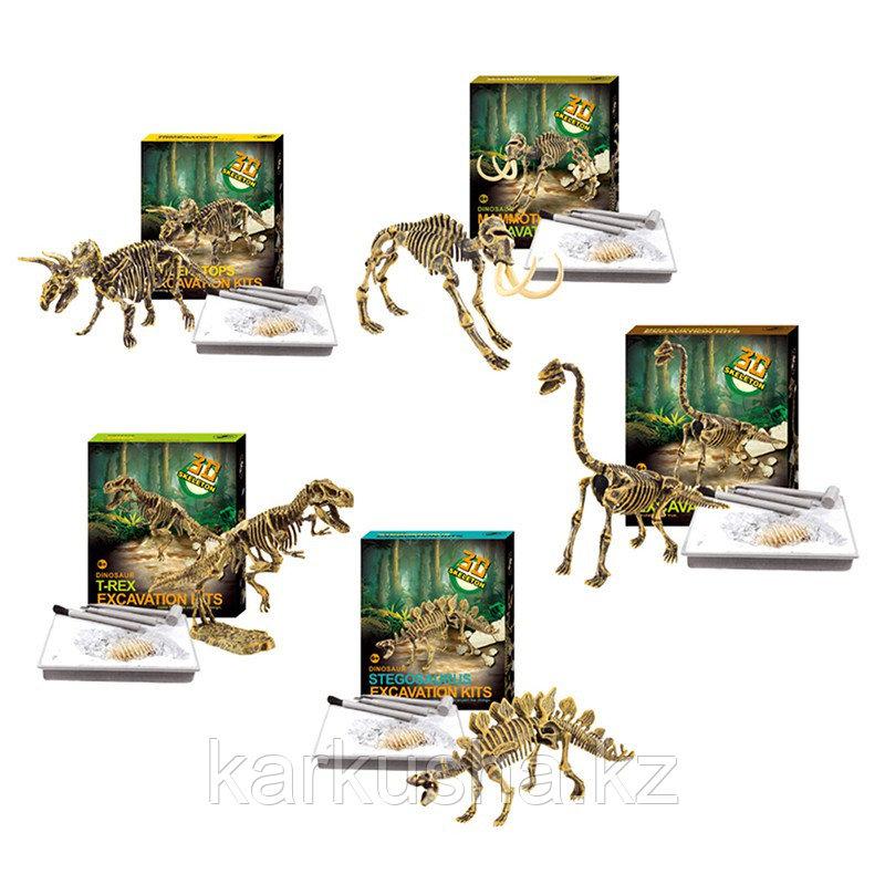 Набор для раскопок Dinosaur excavation kit