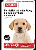 Ошейник Flea&Tick от блох и клещей для щенков (Черный), Beaphar - 65 см