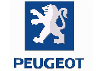 Стёкла фар для PEUGEOT