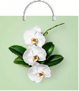 """Пакет с пластиковой ручкой  37*36см """"Орхидея на салатовом"""", ПВД, 100мкм, 10 шт"""