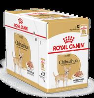 Корм паштет Royal Canin Chihuahua Adult для взрослых собак Чихуахуа - 12 х 85 г