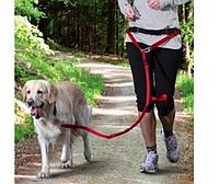 Поводок с поясом для бега с собакой