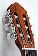 Классическая гитара Cort AC100-SG 4/4, глянцевая,, фото 5