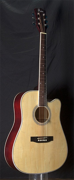 Акустическая гитара, Foix FFG-1041NA
