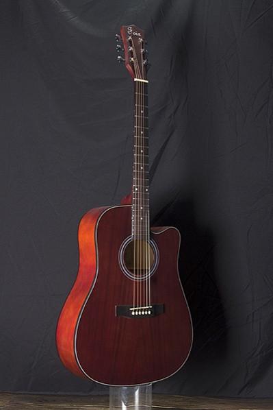 Акустическая гитара, Foix FFG-1041MH