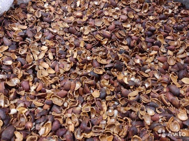 Скорлупа кедрового ореха, 170 гр