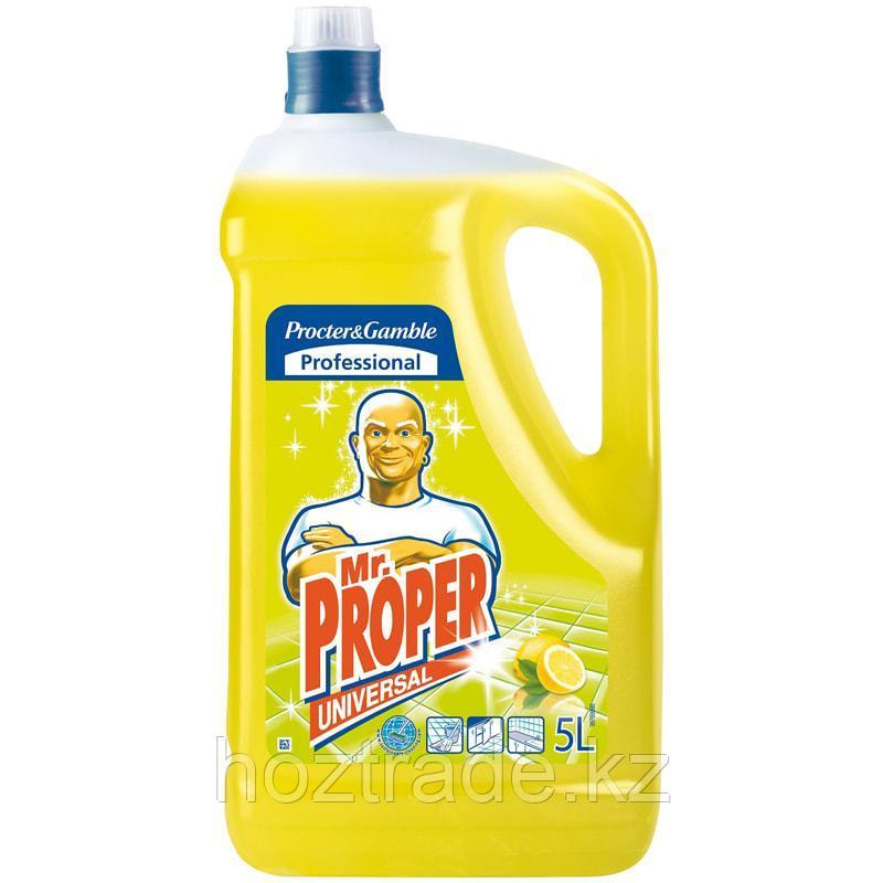Средство для мытья полов и стен Mr.Proper (мистер Пропер), канистра, 5л
