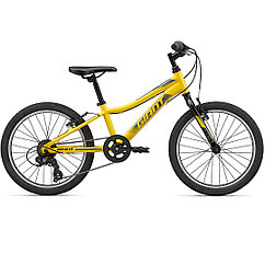 Giant  велосипед XtC Jr 20 Lite - 2020