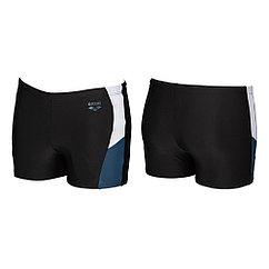 Arena  плавки-шорты мужские Ren
