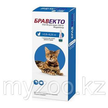 Бравекто Капли для кошек, 2,8-6,25 кг