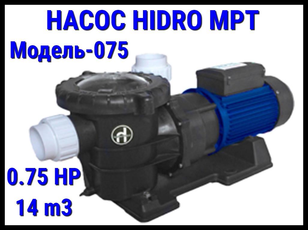 Насос для бассейна Hidro MPT075 c префильтром