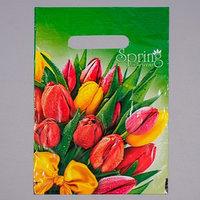 Пакет 'Весна', полиэтиленовый с вырубной ручкой, 20 х 30 см, 30 мкм (комплект из 100 шт.)