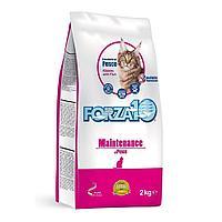 Корм Forza10 Maintenance для взрослых кошек (Рыба) - 2 кг