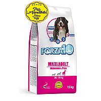 Корм Forza10 Maxi Adult Maintenance для взрослых собак, крупных пород (Рыба) - 15 кг
