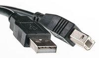 Кабель для принтера PowerPlant USB 2.0 AM BM (5м)