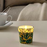АВЛОНГ Неароматическая свеча в стеклянном подсвечнике, Монстера, лист зеленый, 7.5 см