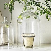ВЭЛЬДОФТ Ароматическая свеча в стакане, ревень бузина бежевый, бежевый, 8 см