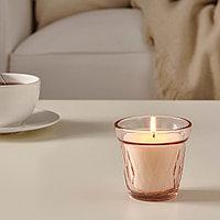 ВЭЛЬДОФТ Ароматическая свеча в стакане, Клюква розовый, розовый, 8 см