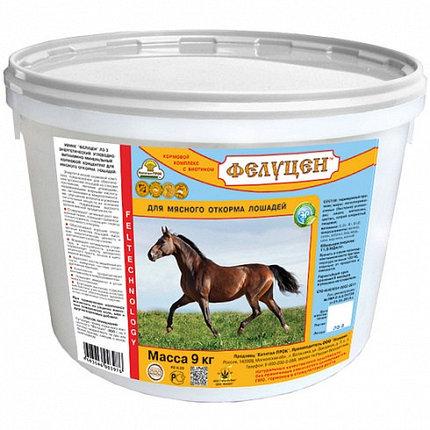 Фелуцен энергетический ЛЭ-3 для мясного откорма лошадей (гранулы) 9кг, фото 2