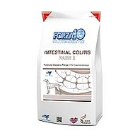 Корм Forza 10 Intestinal Colitis Fase 2 для взрослых собак для лечения колитов (Рыба) - 4 кг