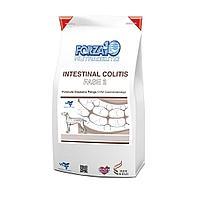 Корм Forza 10 Intestinal Colitis Fase 2 для взрослых собак для лечения колитов (Рыба) - 10 кг