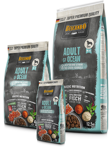 Беззерновой, безглютеновый корм Belcando для взрослых собак средних и крупных пород (Лосось) - 1 кг