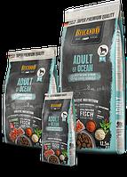 Беззерновой, безглютеновый корм Belcando для взрослых собак средних и крупных пород (Лосось) - 4 кг