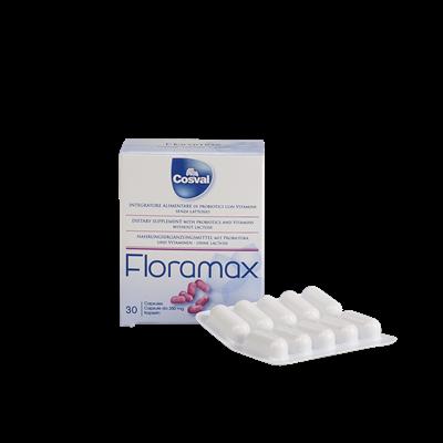 Флорамакс препарат для устранения дисбактериоза и восстановления микрофлоры кишечника