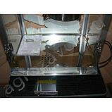 Аппарат для приготовления попкорна TBG-81 (AR), фото 3