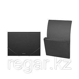 Папка-картотека пластиковая  ErichKrause® Classic, с 12 отделениями, A4, черный (в дисплее по 6 шт.)