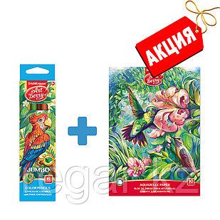 Цветные карандаши ArtBerry Jumbo, 6 цв. + Альбом для рисования ArtBerry, 10 л.