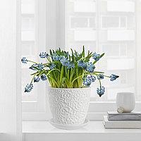 САЛЬПЕТЕР Горшок цветочный бел 12 см