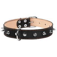 Ошейник Collar кожаный черный с шипами (Черный) - 38-50 см