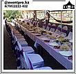 Столы Прямоугольные на Прокат, фото 3