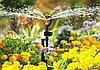 Система полива Расцветайка