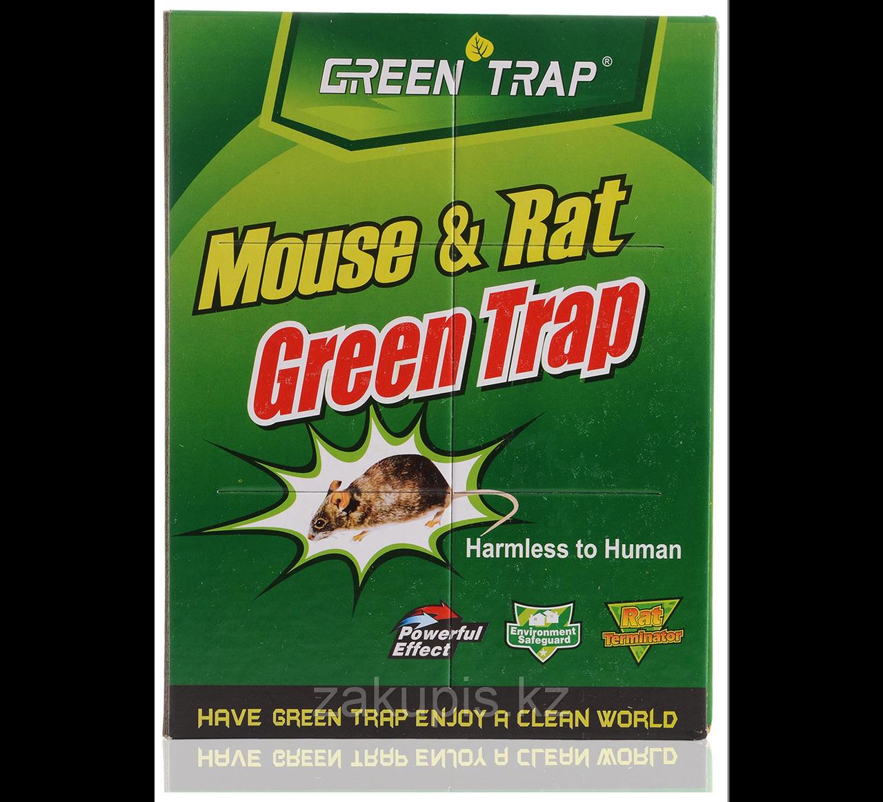 Клеевая ловушка для мышей