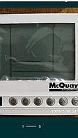 McQuay, фото 1