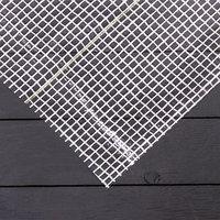 Плёнка полиэтиленовая, армированная, 3 x 10 м, толщина 200 мкм, белая