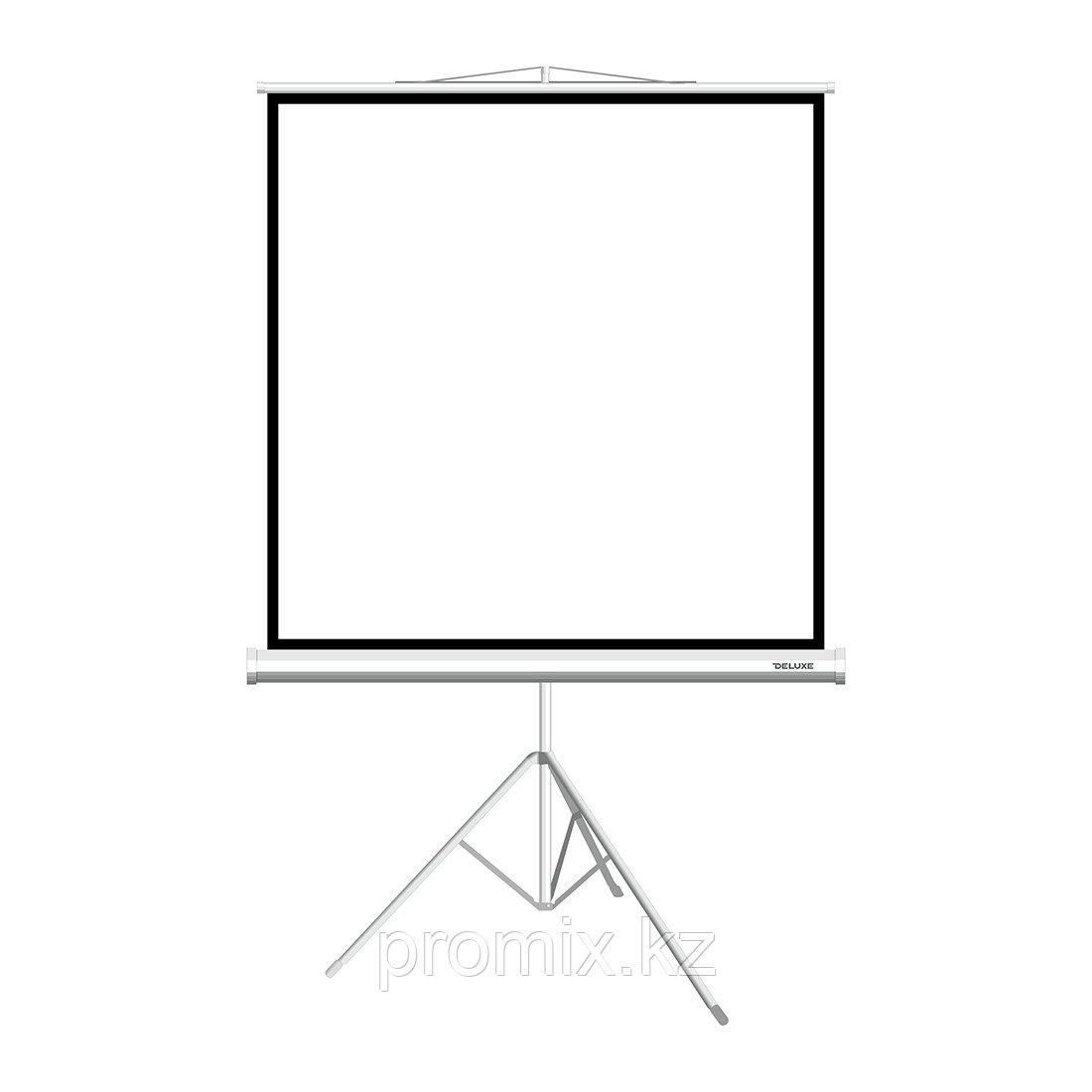 """Экран на треноге Deluxe DLS-T203xW (80""""х80""""), Ø - 113"""", Раб. поверхность 195х195 см., 1:1"""