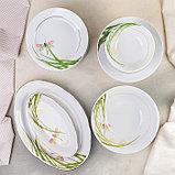 Сервиз столовый «Стрекоза», 37 предметов, 2 вида тарелок, фото 2