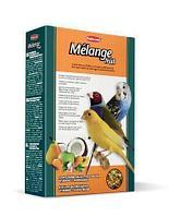 Пюреобразный корм с фруктами и яйцом Padovan MÉLANGE Fruit для зерноядных птиц - 300 г