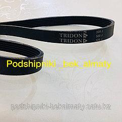 Поликлиновые ремень PJ813/320