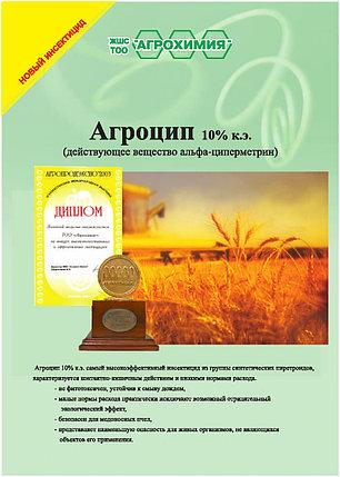 Агроцип 10% концентрат эмульсии, фото 2