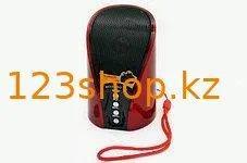 Мобильная переносная колонка SPS WS 133 + BT