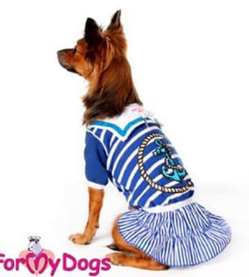 """Платье ForMyDogs """"Морячка """"для собак (Голубой) - 10 р"""
