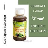Натуральный сок Карела Джамун, 500 мл, Sangam Herbals,, фото 2