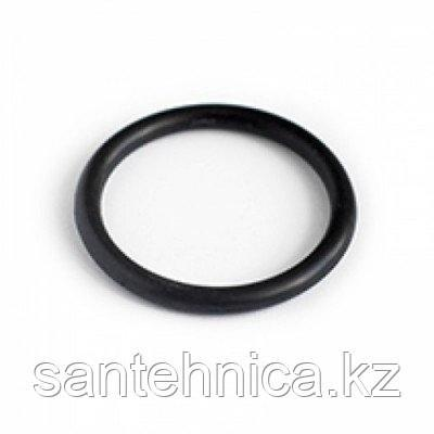 Уплотнительное кольцо для ПНД фитинга Дн 50, фото 2