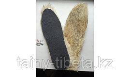 Стельки из собачьей шерсти