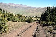 Плато Ассы и Тургеньское ущелье - двухдневный джип-тур на вездеходе, фото 3